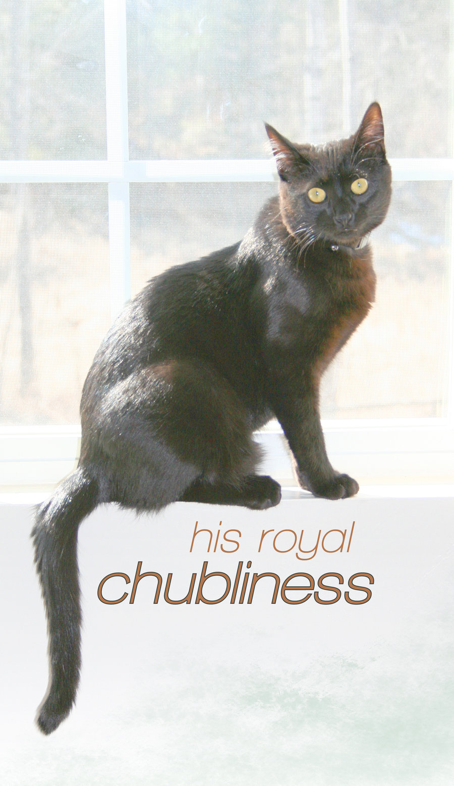 His Royal Chubliness