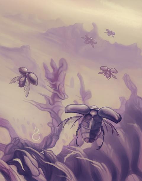 desert bugs